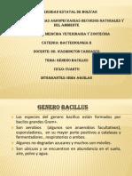 Presentación1 bacteriologia