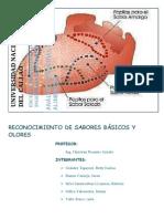 Informe 1 Sensorial