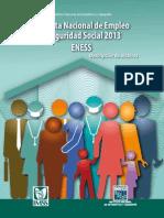 Fd Eness 2013