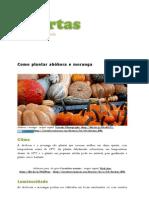 Como Plantar Abóbora e Moranga _ Hortas