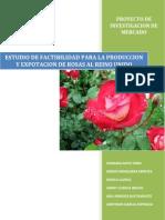 Estudio de Factibilidad Para La Produccion y Exportacion de Rosas Al Reino Unido