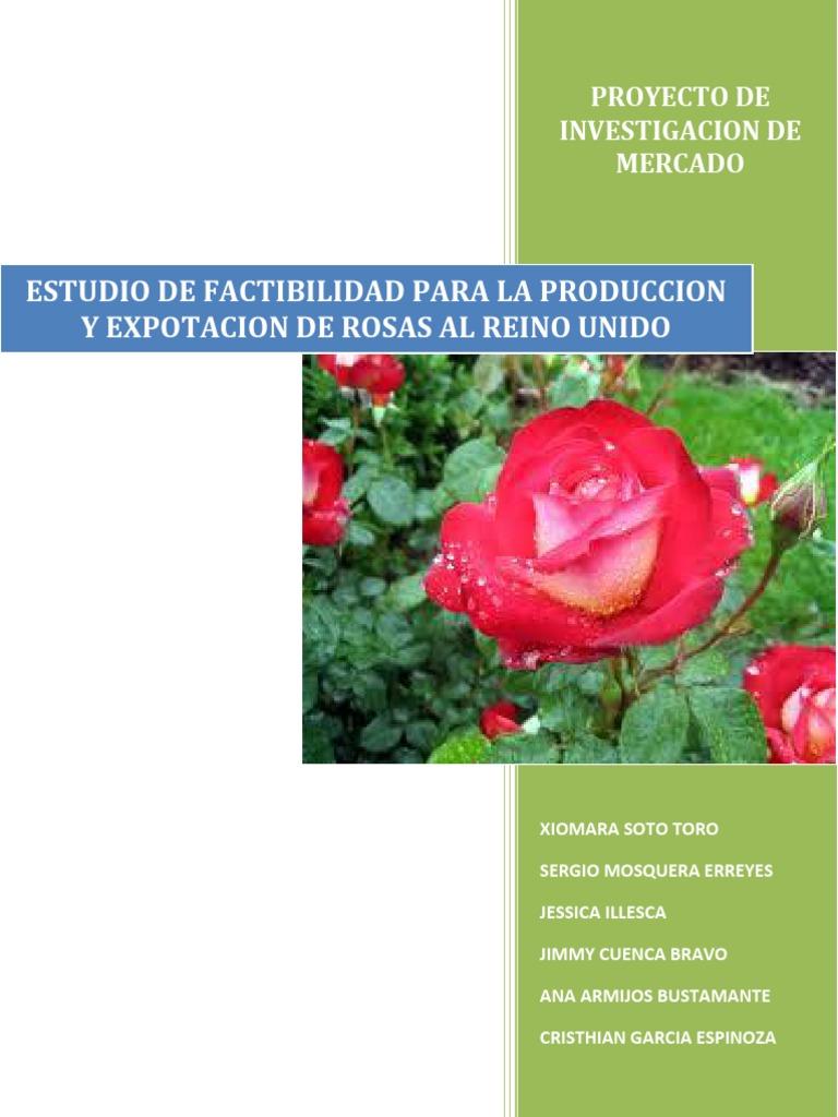 Estudio de Factibilidad Para La Produccion y Exportacion de Rosas Al ...