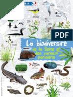 Affiche Biodiversite de La Seine Et Des Canaux