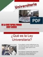Ley Universitaria Andy