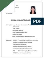 Curriculum Bernda Valdez