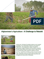 Afghanistan's Agriculture - A Challenge to Rebuild