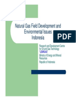 2Natural Gas Field Development