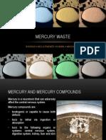 Mercury Waste
