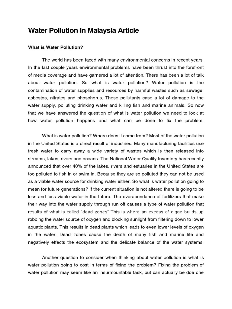 pollution essay for high school students