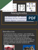 Aneuploidea Expos Genetica