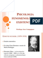 Slidespsicologiafenomenolgico Existencial 121129190326 Phpapp01