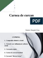 Carnea de Curcan