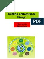 Gestion Ambiental de Riesgo