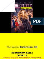 the journal exercise 03