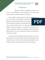 Informe Final Horno Ladrillero[1]