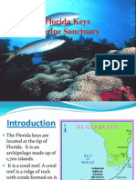 florida keys marine sanctuary presentation