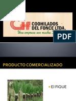 Expo Coohilados