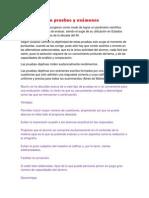 Objetividad en Pruebas y Exámenes