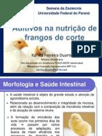 Palestra Aditivos UFPR