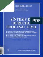 Sintesis de Derecho Procesal Civil - Rene Jorquera Lorca