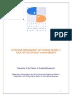 Effective Management Diverse Teams-Toolkit