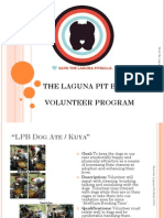 Lpb Volunteer Program 2013