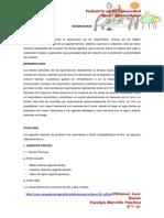 PEDIATRIA COMUNITARIA QUEMADURAS