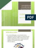 clasificacion de los microorganismos.pdf