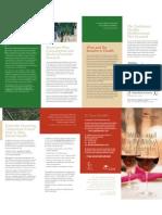 CVA Brochure