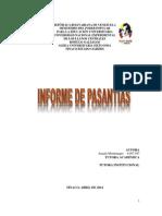 Informe de Pasantías (Amada Montenegro-unerg)