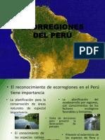 Ecorregion Tropical