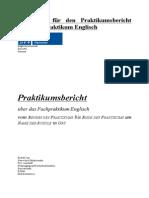 Guidelines Praktikumsbericht