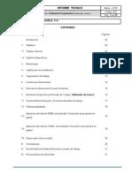 Informe Modelo Analisis Ergonomico de Puesto de Trabajo(1)