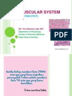 Sistem Otot_bhn Kul