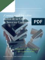 Conoce Los Cabos Sueltos de Su CSC -Deloitte