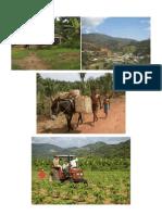 Comunidad Rural