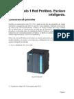 Manual Profibus Maestro-Esclavo Inteligente V2