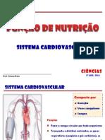 Cardiovascular 8ª Ano 2014.