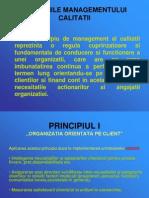 106840945 Principiile Managementului Calitatii