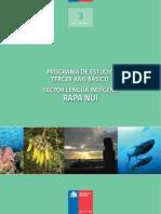 Rapa Nui 3web