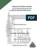 Tesis Caracterizacion e Importancia de 10 Juguetes Tradicionales Mexicanos Elaborados en Madera