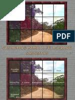 CaminhosparaaFelicidade[1]