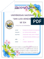 MODELO DE PAE 2