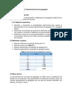 Informe Concretos