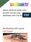 Demam Berdarah Adalah Suatu Penyakit Menular Yang Disebabkan Oleh Virus Dengue Dan Ditularkan Oleh Nyamuk Ades Aegypti