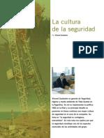 Cultura de Seguridad-Argentina