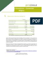 1387199447Belgica Analisis Economico 2013
