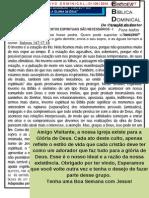 Boletim Informativo n.º 317