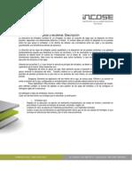 Estructura de Entrepisos y Escaleras