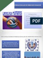 Organizaciones Internacionales de Los Derechos Humanos